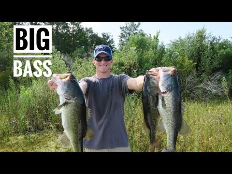 15lbs of BASS in FLORIDA!!
