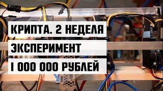 2 неделя. Эксперимент: 1 000 000 рублей — в криптовалюту и майнинг