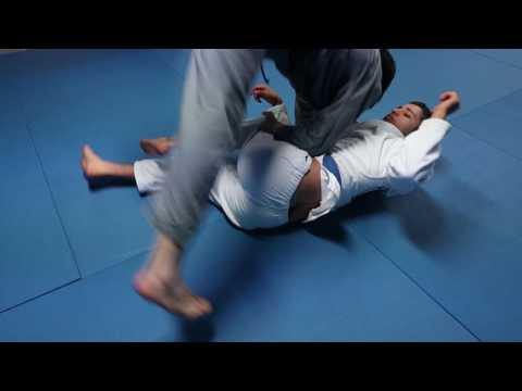 Shin trap to leg drag | How to BJJ Techniques