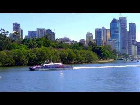 Brisbane River and city cat