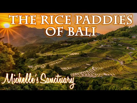 """Bali Rice Fields at Night"": Magical Bedtime Story and Guided Meditation (Water Sounds)"