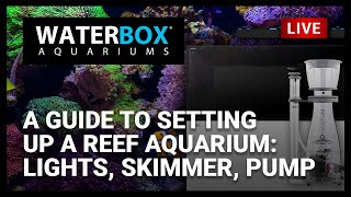 A Guide To Setting Up A Reef Aquarium: Lights, Skimmer, & Pump