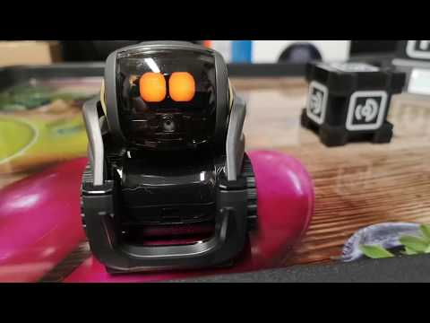"Anki Vector Robot honest review ""what you need to know"""