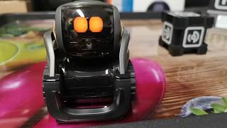 Anki Vector Robot honest review 'what you need to know'