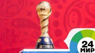 Кубок FIFA в Петербурге: звезды спорта и шоу-бизнеса сыграли в футбол - МИР 24