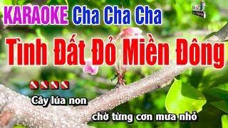 Tình Đất Đỏ Miền Đông Karaoke| Beat Cha Cha 2019 - Nhạc Sống Thanh Ngân
