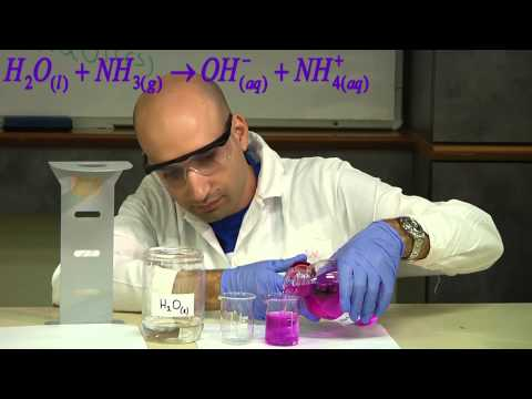 NH3 + H2O Ammonia and water המסת אמוניה במים