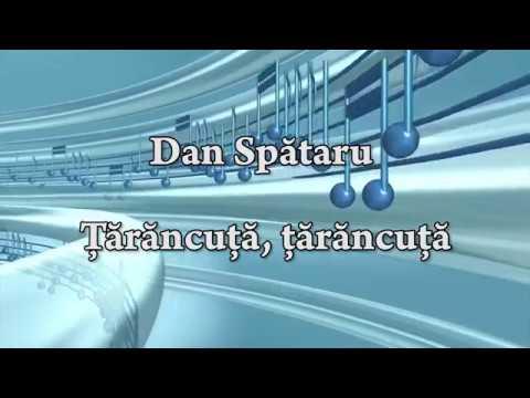 Dan Spătaru - Tarancuta, tarancuta (versuri, lyrics, karaoke)