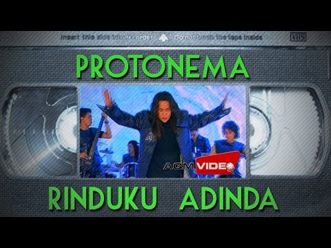 Protonema - Rinduku Adinda | Official Video