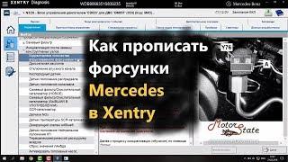 Как прописать форсунки дизеля Mercedes Sprinter CDI 2011 в программе Xentry