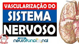 No cérebro vaso em sanguíneo colapso