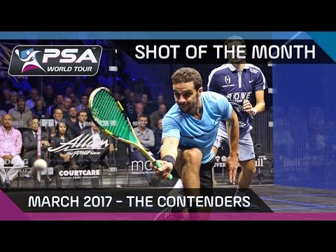 Squash: Shot of the Month - March 2017: The Contenders