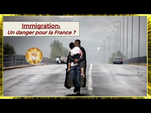 L'immigration menace t-elle la France ? - PaternActu #22