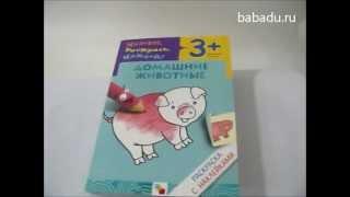 Раскраска с наклейками Домашние животные