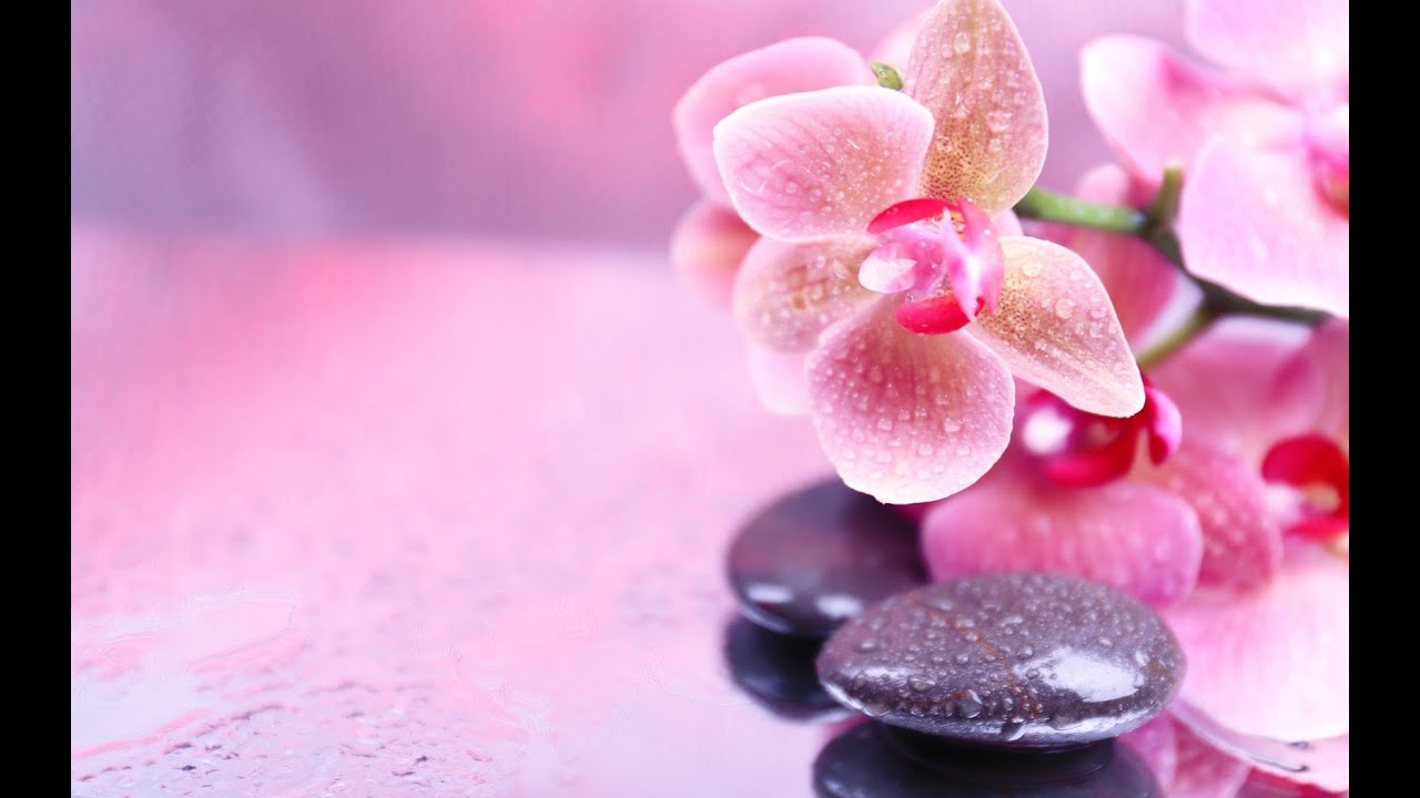 Relaxing music spa music calming music soothing for Salon wallpaper