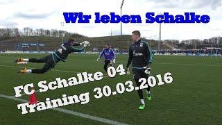 Schalke Training 30.03.2016   沙尔克04