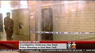 NYPD: Man Shot And Killed By Police Inside Brooklyn Housing Complex