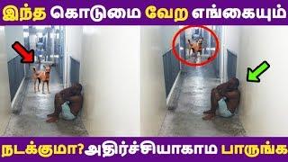 இந்த கொடுமை வேற எங்கையும் நடக்குமா? அதிர்ச்சியாகாம பாருங்க Tamil News | Latest News | Viral
