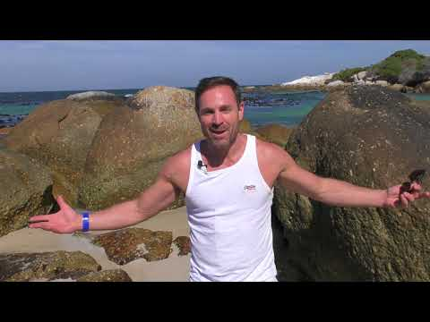 Secret Beaches of Cape Town