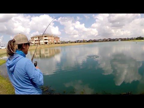 That's No Bass   Largemouth Bass Fishing In Sugar Land, TX