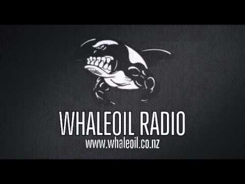 Whale in Fiji - Aiyaz Sayed-Khaiyum