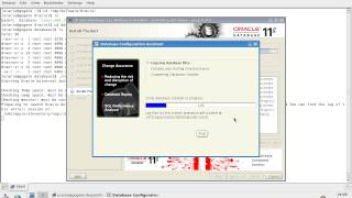 Informatica Installation On Linux - Part2 (Oracle Installation)