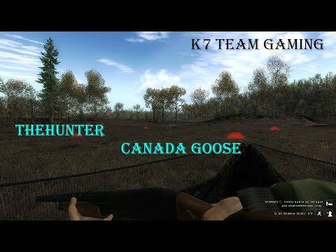 theHunter - Canada Goose