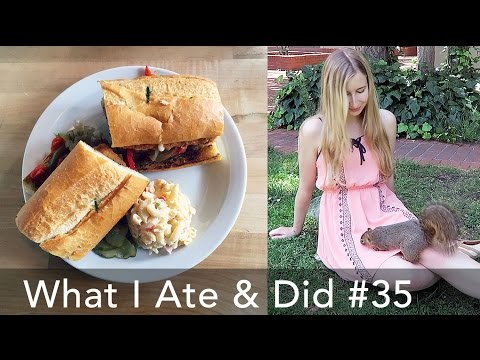 What I Ate on my Last Day in Berkeley (Vegan) | Butcher's Son, CREAM, Toss, & Playing with Squirrels