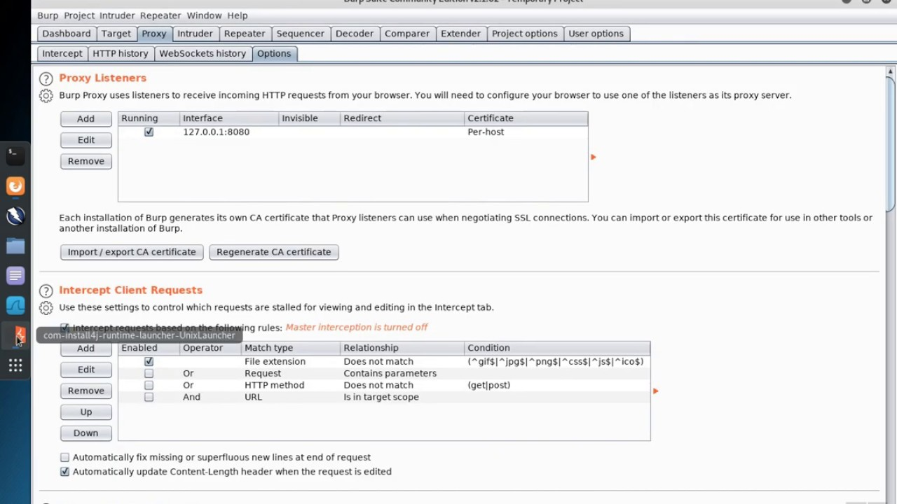 Burp Suite 2: Proxy History Filter