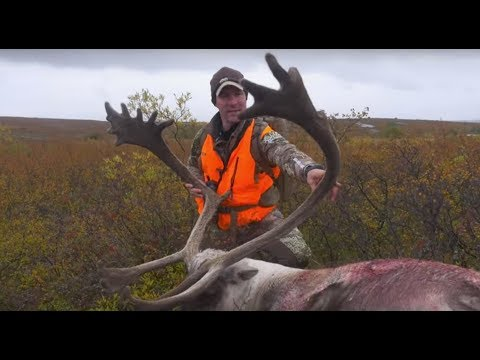 The Zone S6:E8, Quebec Caribou & Black Bear.  The Great Double Double