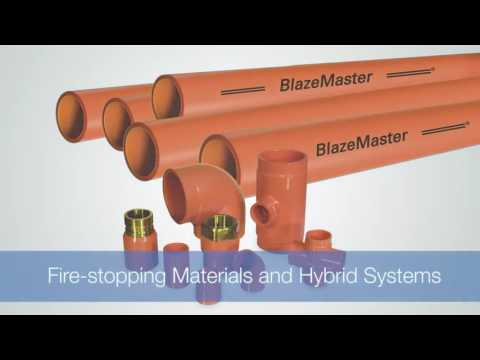 Video Module 5: Special Considerations for Fire Protection Professionals
