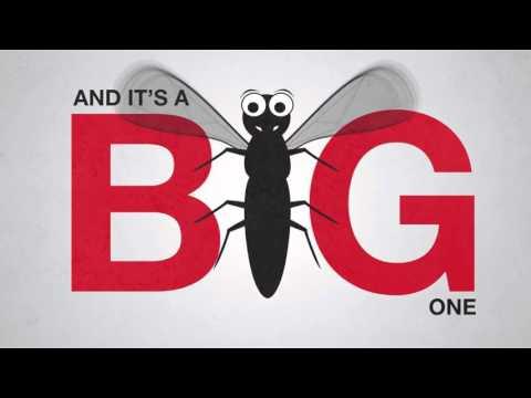 World Malaria Day - #StayMalariaProtected