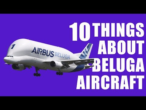 10 Things About Beluga Cargo Aircraft : 2018