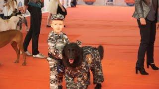 XIX Нацональная выставка собак всех пород. Кубок Нижнего Новгорода 2016. Часть 1.