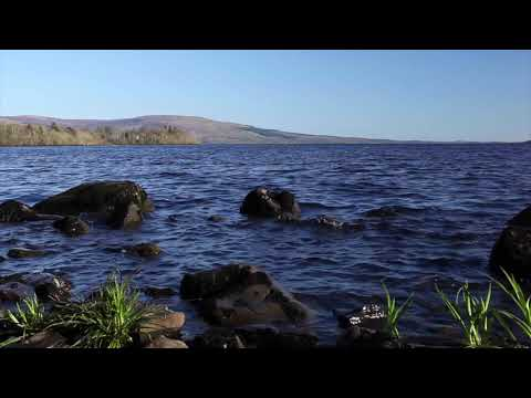 20mins Relaxing Nature Sounds-Lapping Water-Birds Singing-Birdsong Relaxation-A Short Meditation