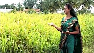 azhagaai nirkum yaar ivargal,- Christina Samson- Tamil Christian Songs