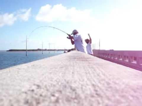 Snapper fishing florida keys bridge youtube for Florida keys bridge fishing
