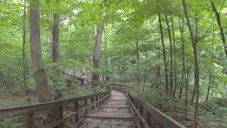 Highbanks Virtual Trail Run