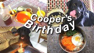 It's My Dog's BIRTHDAY | COOPER'S 2nd BIRTHDAY |ANURIKA DAS|