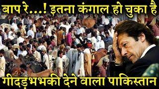 पाकिस्तान की असली हैसियत जानकर हैरान रह जाएंगे। INDIA NEWS VIRAL