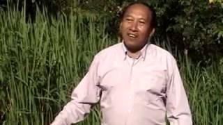 ເພງ: ຊອກຫາເນື້ອຄູ່, ຜົ້ງສາລີ Phongsaly laos 2010