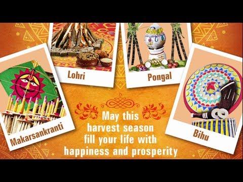 Happy Lohri, Pongal, Makar Sankranti, Bihu...