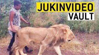 Big Cats Video Compilation from the JukinVideo Vault