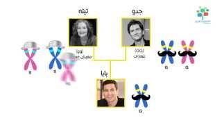 أنا ليه معنديش غمّازات؟ | الجينات لما تحكم | علوم طبيعية