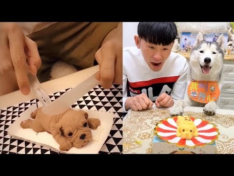 Dog Reaction to Dog Cake - Funny Dog Cake Reaction Compilation