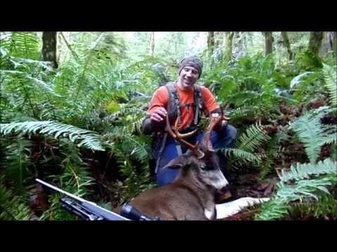 2016 Washington Blacktail Deer Hunt #2