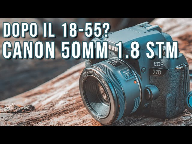 50mm Canon f1.8 STM | L'OBBIETTIVO DA ACQUISTARE DOPO IL 18-55