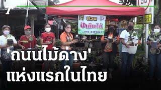 เปิดแล้ว 'ถนนไม้ด่าง' แห่งแรกในไทย | 20-09-64 | ข่าวเช้าหัวเขียว