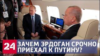 Путин и Эрдоган в Москве сыграют «русскую шахматную партию» - Россия 24