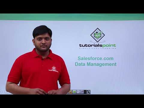 Salesforce - Data Management